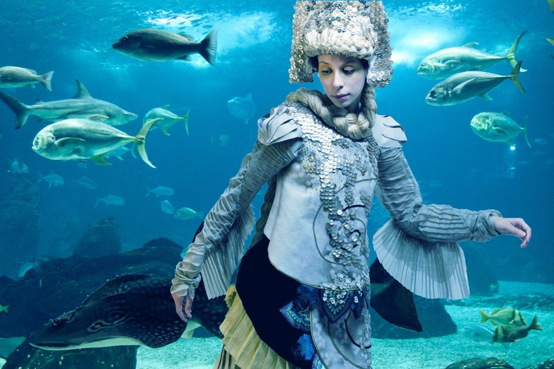 Liberator of the Sun fish 3