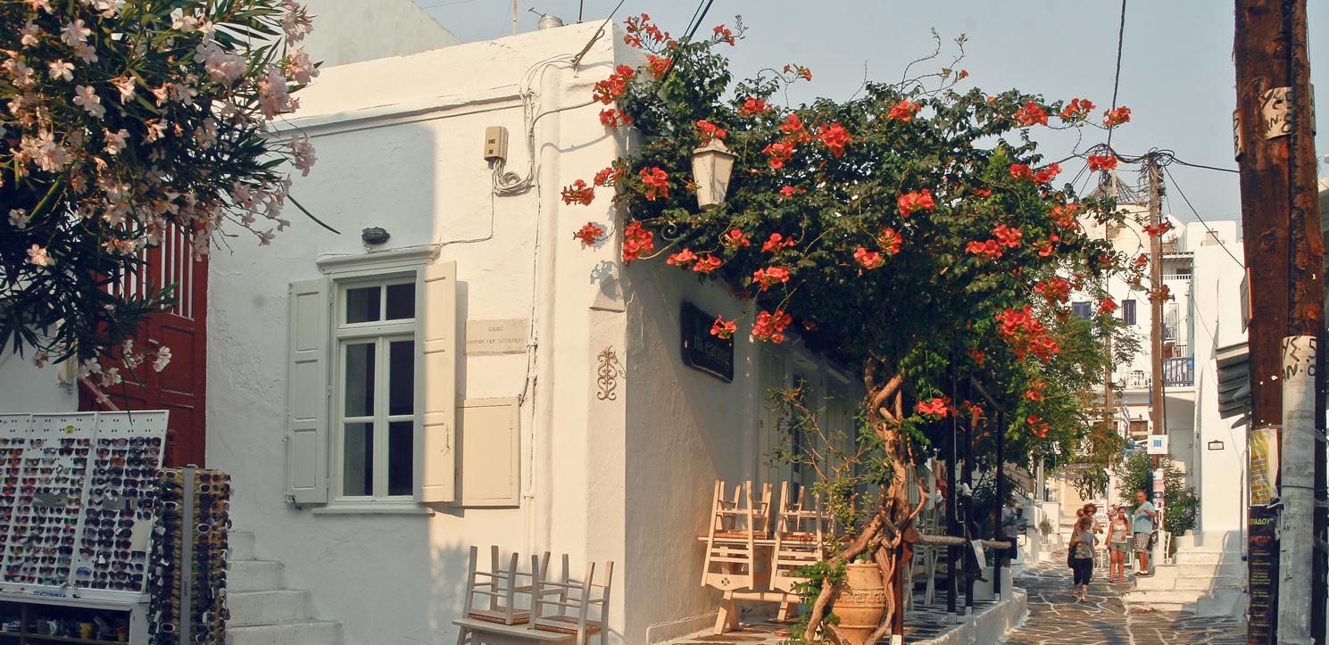 Mykonos town flowers