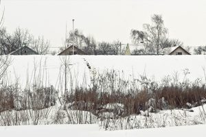 http://tiyana.net/wp-content/uploads/2016/12/Sremska-Mitrovica-1-300x200.jpg
